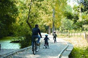 files/cledeschamps/images/activites/Marais-poitevin-velo.JPG